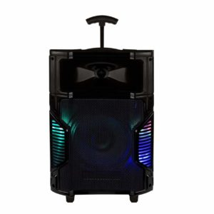SOUND PLUS 10 Inch Wooden Cabinet Karaoke Bluetooth PA System Portable Trolley Speaker with 1 Wireless Mic